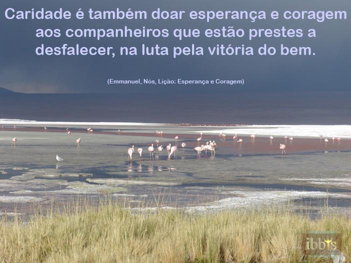 esperanca_10