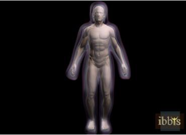 Os corpos