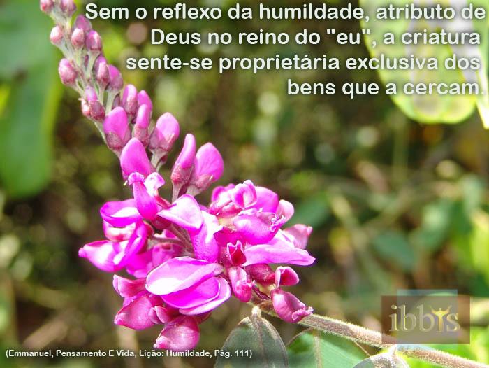humildade_13