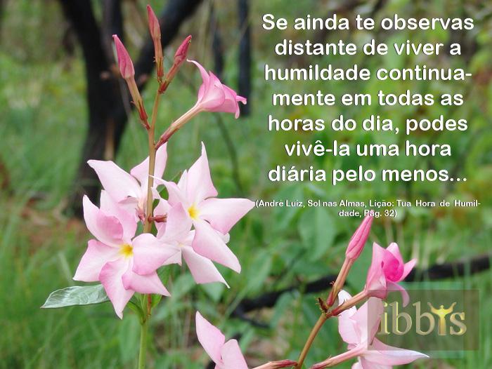 humildade_9
