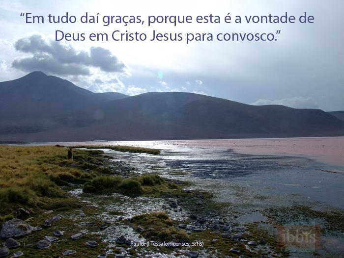 graca_1