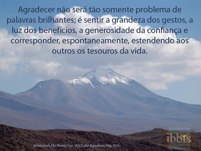 graca_11