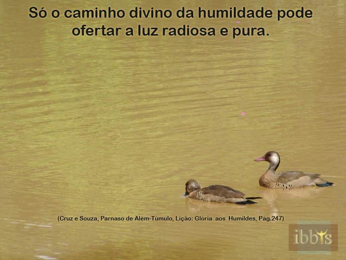 humildade_12